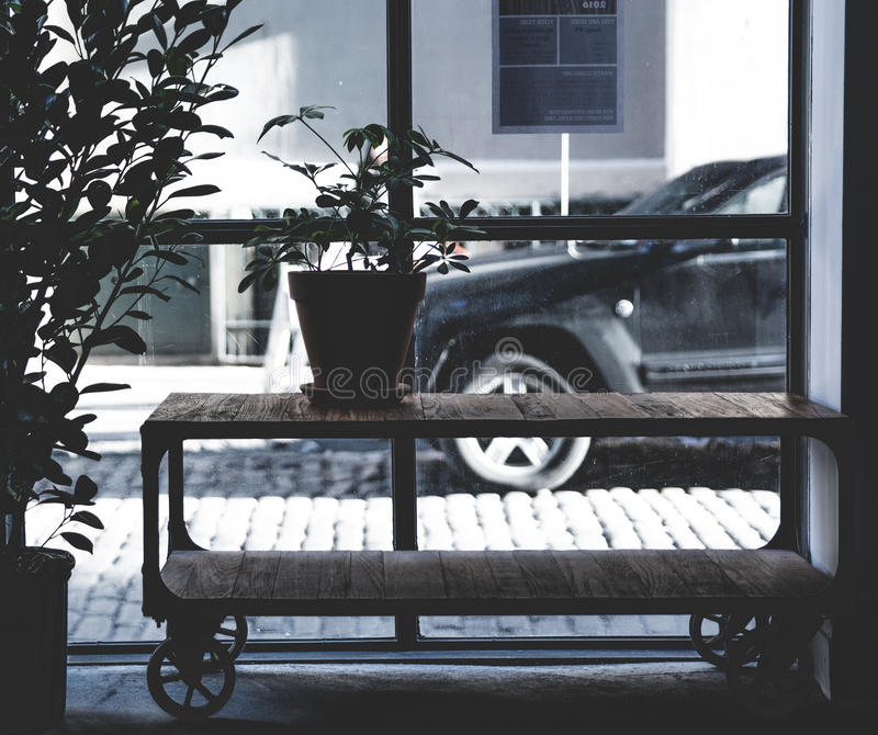 Green Potted Plant On Brown Wooden Table Across Black Car During Daytime Free Public Domain Cc0 Image