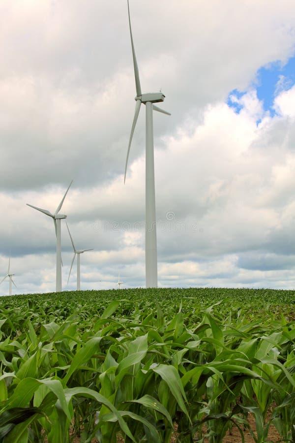 Green Power royalty free stock photo