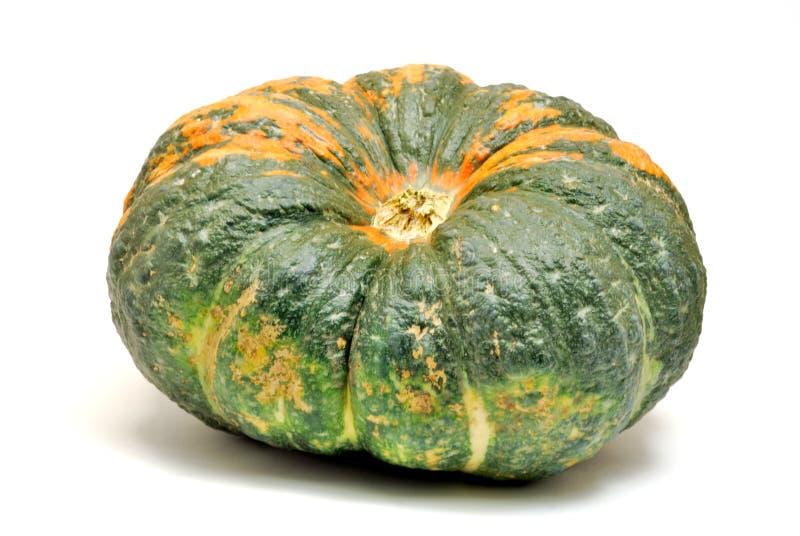 Green pumpkin stock photos