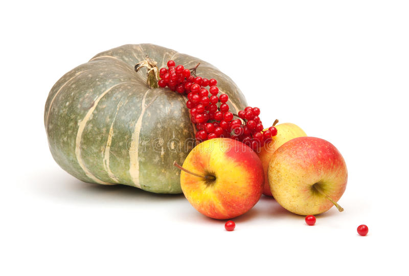 Green pumpkin. Tasty apples and red arrowwood stock photography