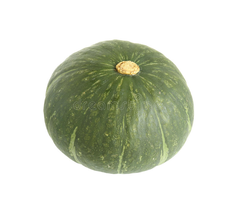 Green pumpkin. Fresh green pumpkin isolated on white background stock images