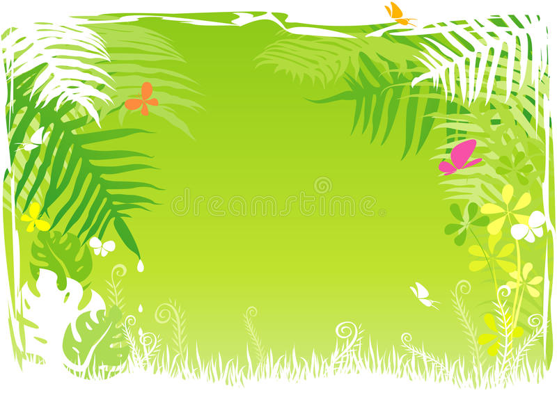 Green Rainforest Background Royalty Free Stock Photography