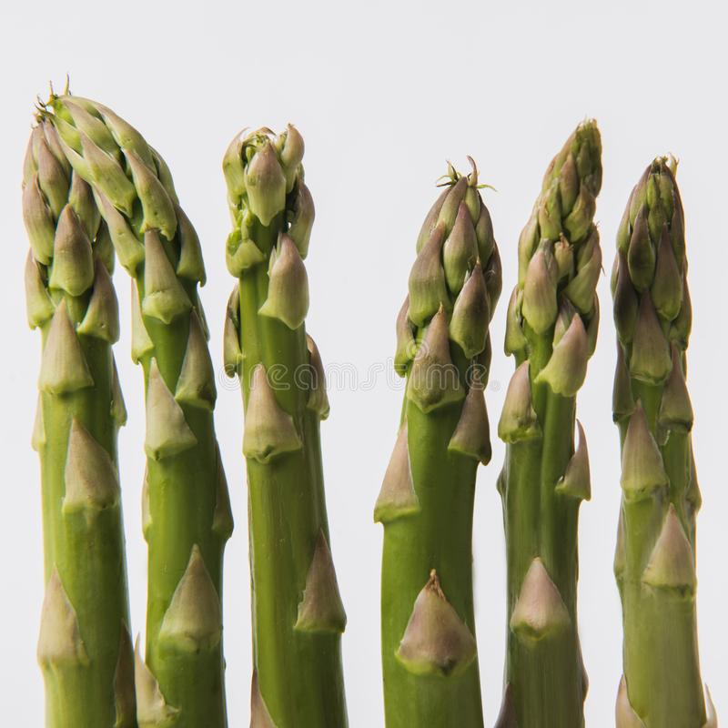 green raw asparagus  on white royalty free stock images