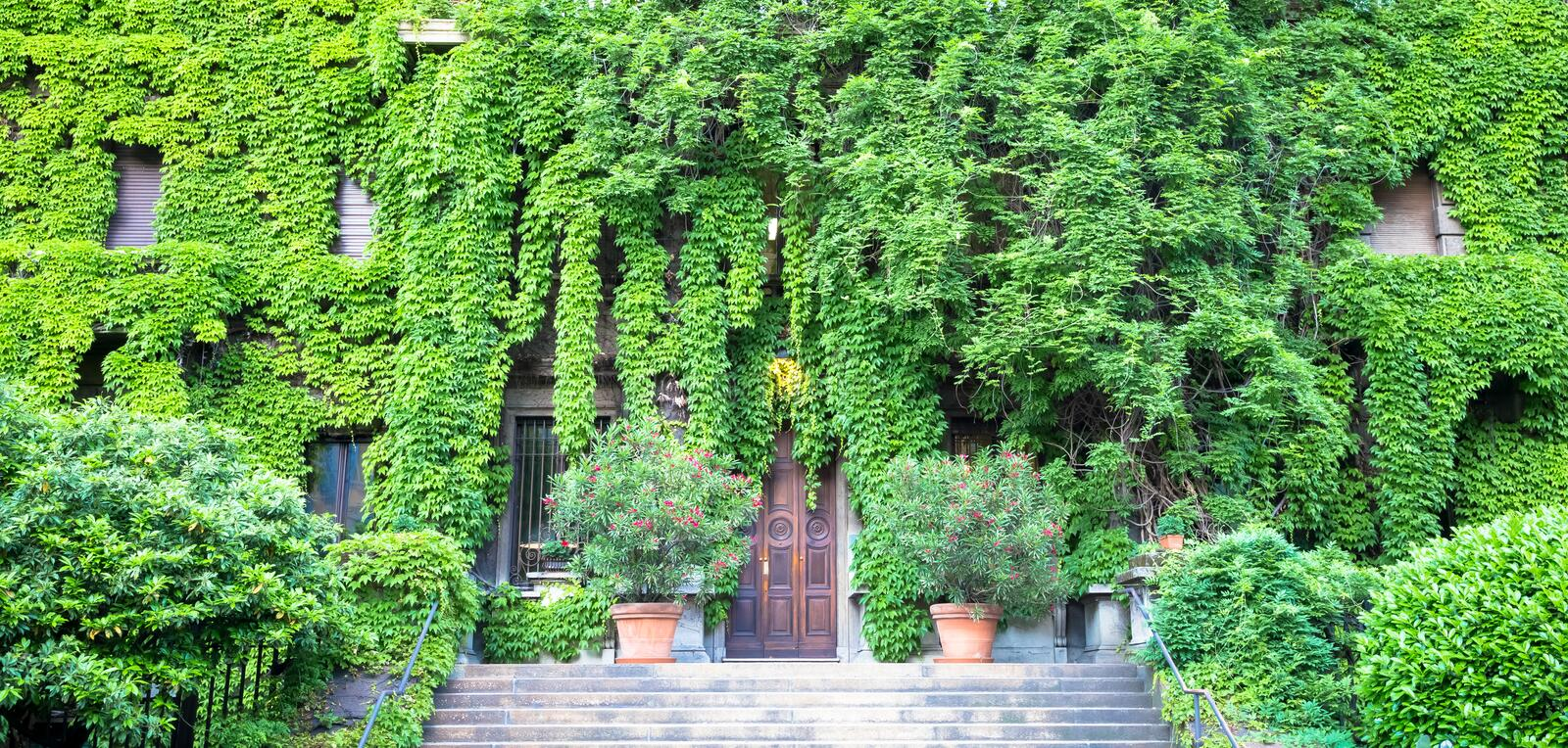 Green Real Estate. Integration of nature and real estate on this old Italian building royalty free stock image