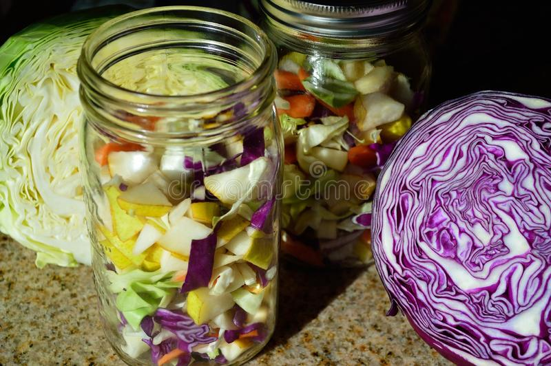 Green and Red Cabbage sliced, quart jar of ingredients for cultured fermented vegetables and fruits. Completed mixture for Cultured or Fermented vegetables stock photo