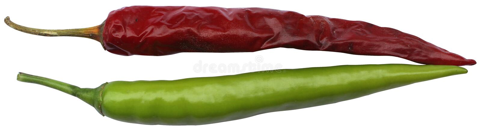 Green and red chilly stock photo