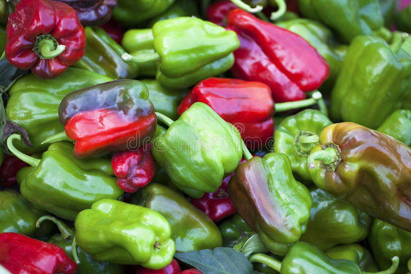 Green and red peppers royalty free stock photo