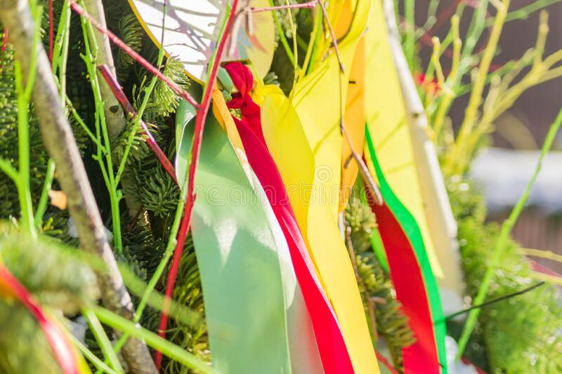 Green, red, yellow satin ribbons on christmas tree as decoration.  royalty free stock images