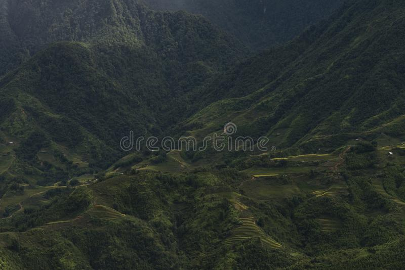 Landscape of rice terraces in Sapa, Lao Cai, Vietnam. Green rice terraces landscape in Sapa, Lao Cai, Vietnam royalty free stock photography