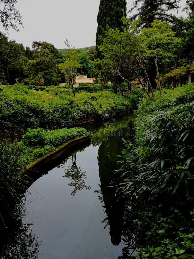 Green River стоковое изображение rf