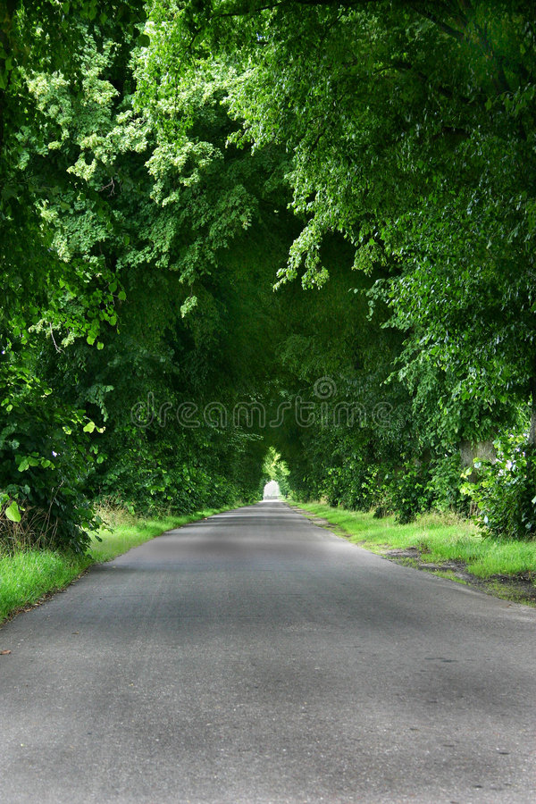 Green road royalty free stock images
