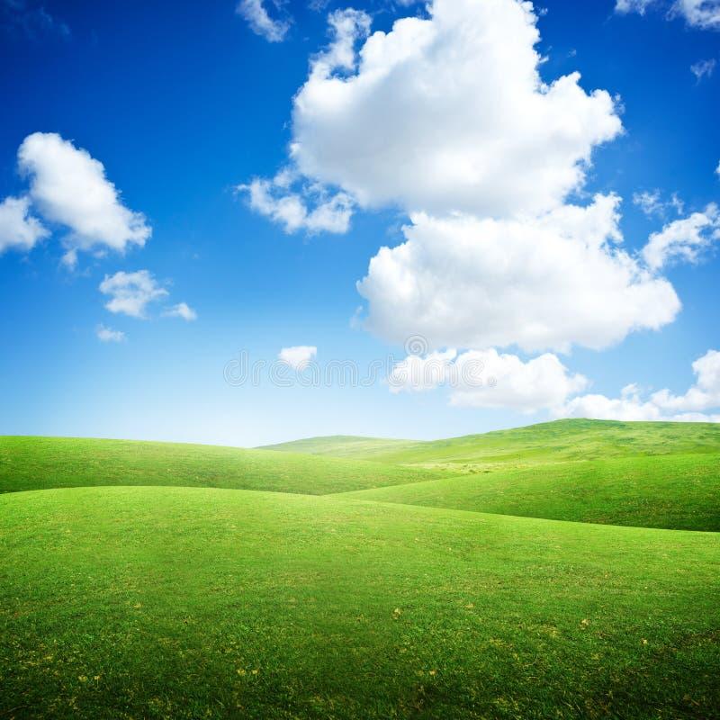 Green Rolling Fields. Summer background stock photos