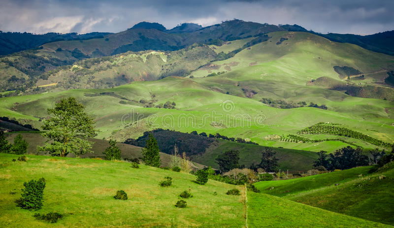 Green Rolling Hills of California near Cambria stock photo
