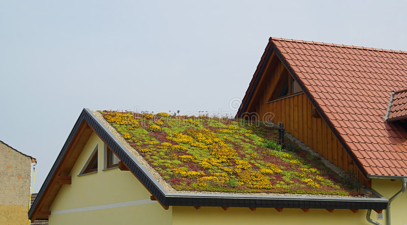 Green roof 01. Green roof - ecological one family house royalty free stock photos