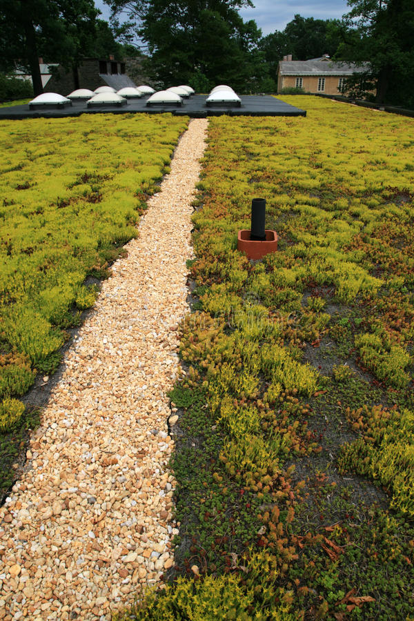 Free Green Roof Royalty Free Stock Images - 14714889