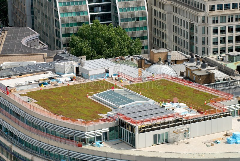 Green roof. Construction of a green roof on the top of a office building in a big city royalty free stock photo