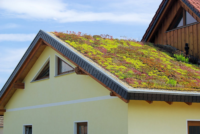 Green roof. An ecological roof stock photo