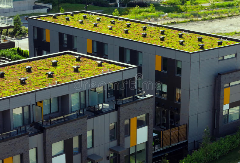 Green roof. Modern building with ecological green roof royalty free stock photos