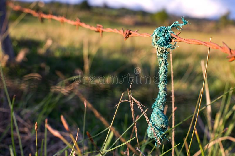 Green rope hanging from a rusted barb wired royalty free stock photography