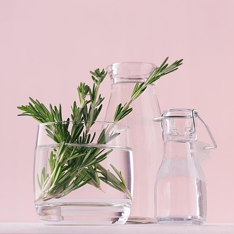 Free Green Rosemary Twigs In Glass Vase And Vintage Bottles As Home Decor On Soft Pink Pastel Background, Square. Royalty Free Stock Photography - 117111057