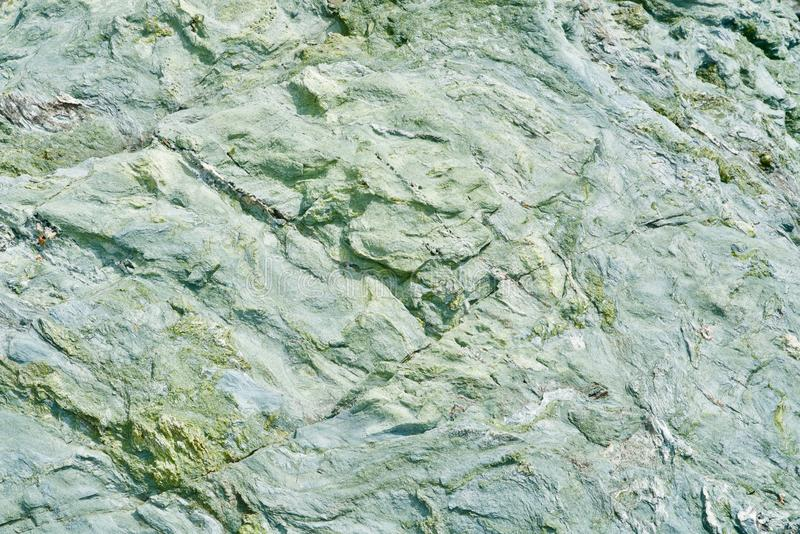 Green rough stone background royalty free stock image