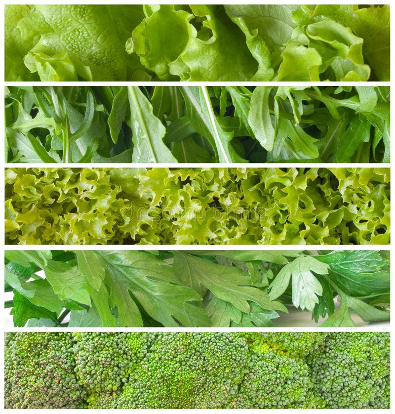 Download Green Salad Stock Photos - Image: 18961203