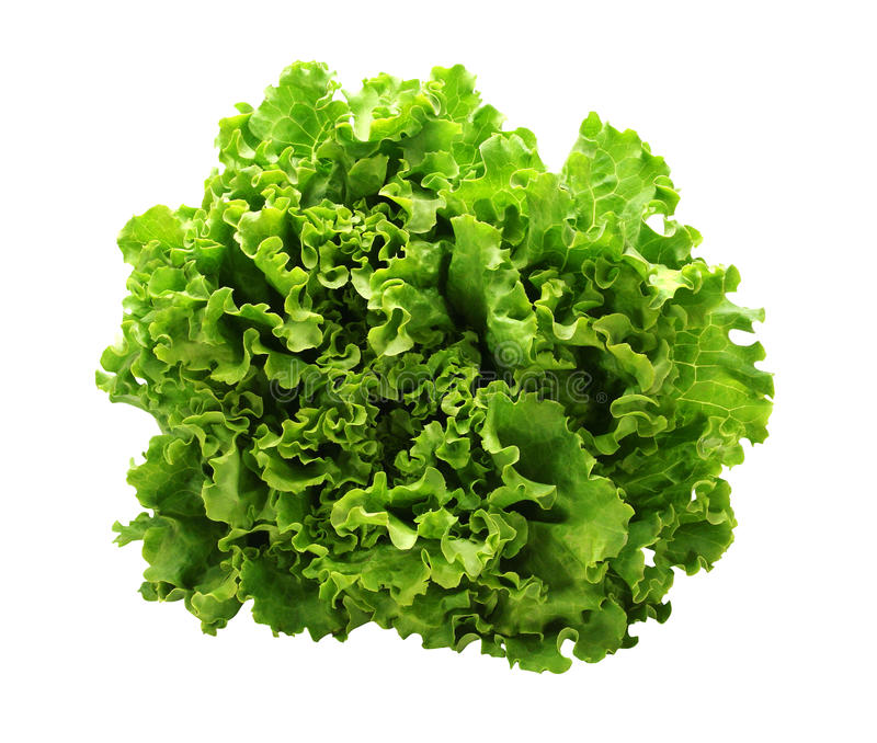 Green salad. On a white background with path royalty free stock images