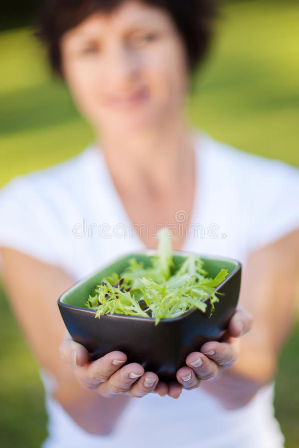 Download Green salad stock image. Image of copy, middle, european - 26833381