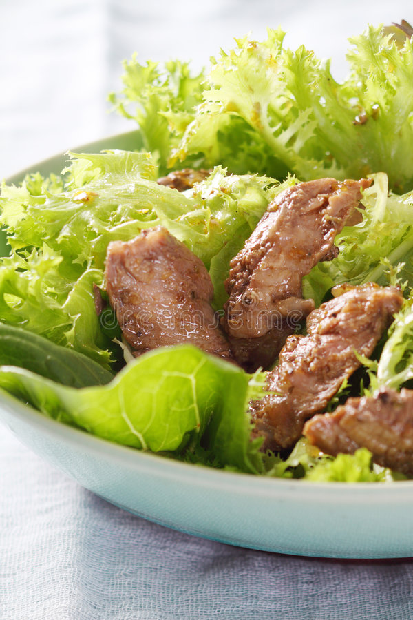 Free Green Salad And Grilled Fillet Of Beef.JPG Stock Photography - 8822802