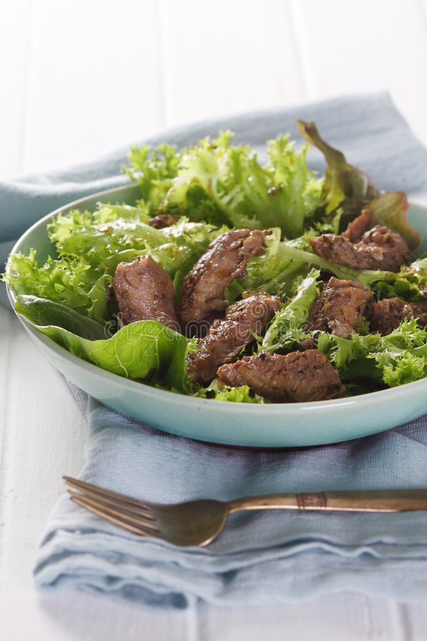 Green Salad And Grilled Fillet Of Beef-3.JPG Royalty Free Stock Image