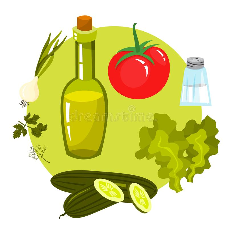 Green salad healthy ingredient for cooking. Cucumber vector illustration