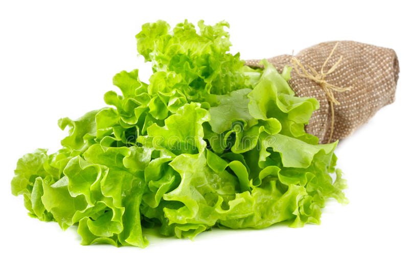 Green salad leaves. royalty free stock photography