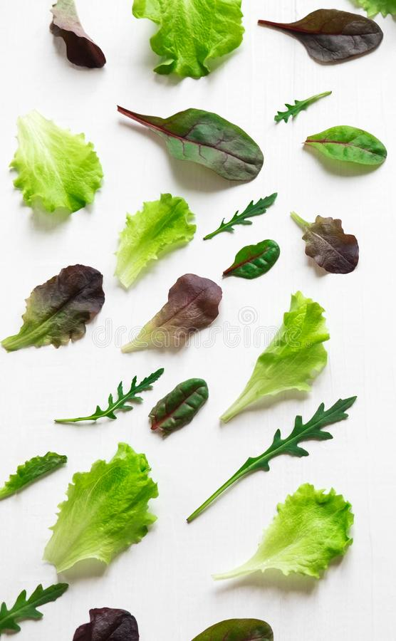 Green salad leaves on a white background. Pattern with lettuce leaves. Background design with leaves for salad. Pattern. With lettuce leaves stock photography