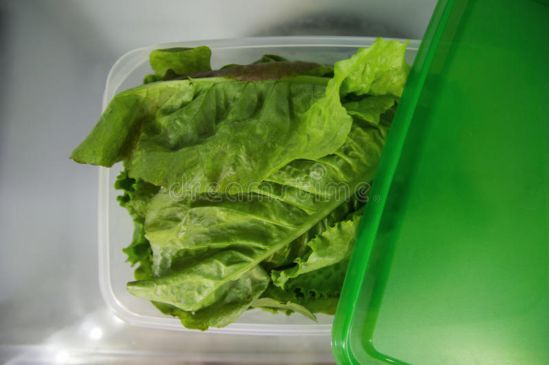 Green salad in the plastic container on a shelf of a fridge. stock photography