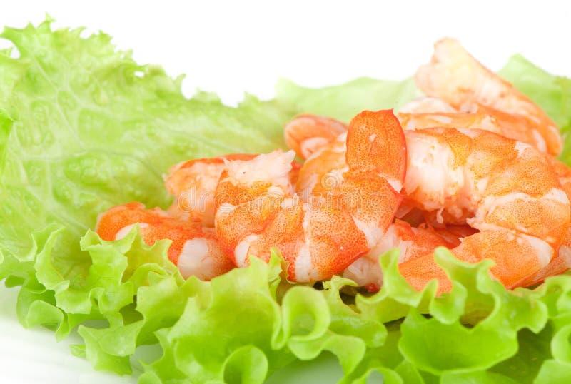 Green salad with shrimps stock photos