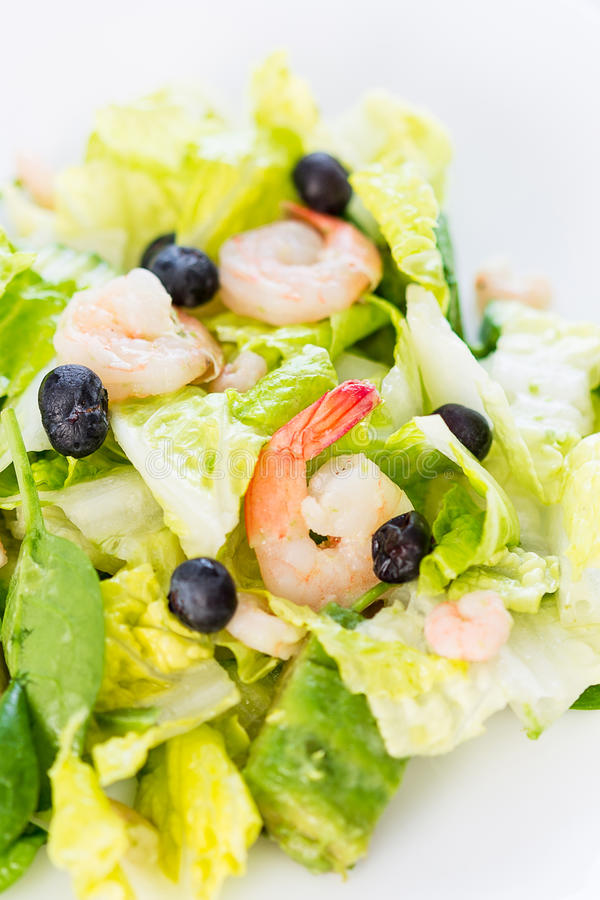 Green Salad with Shrimps on Light White Background, Healthy Eating Concept, Paleo Diet stock images
