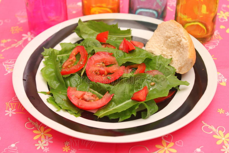 Green salad with Tomatoes royalty free stock photo