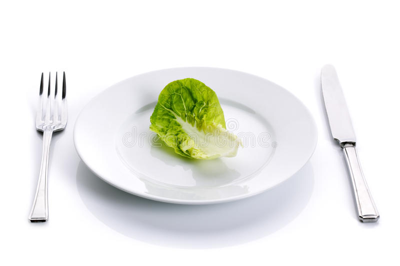 Download Green salad on white plate stock image. Image of nutrient - 15421619