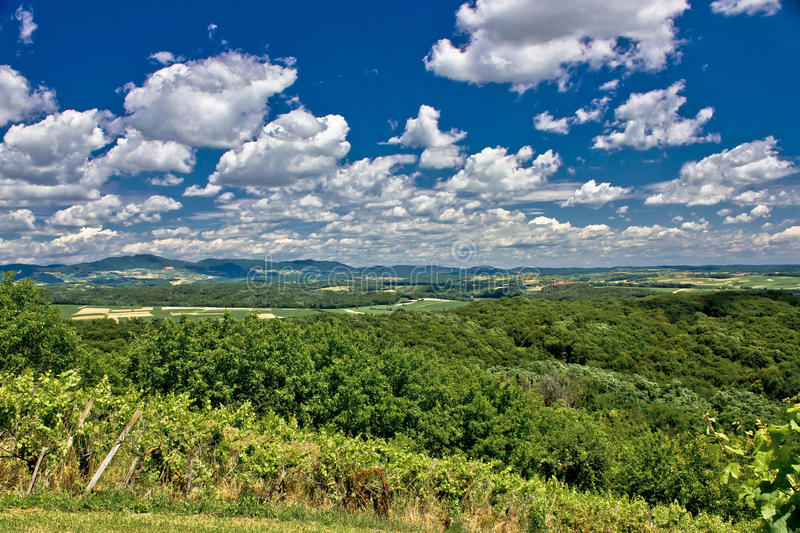 Green scenery landscape under cloudy sky stock photos