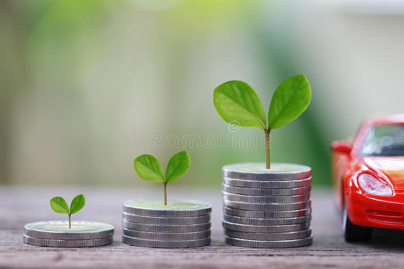 Green Seedlings tree grow on coin money of graph business and re stock images