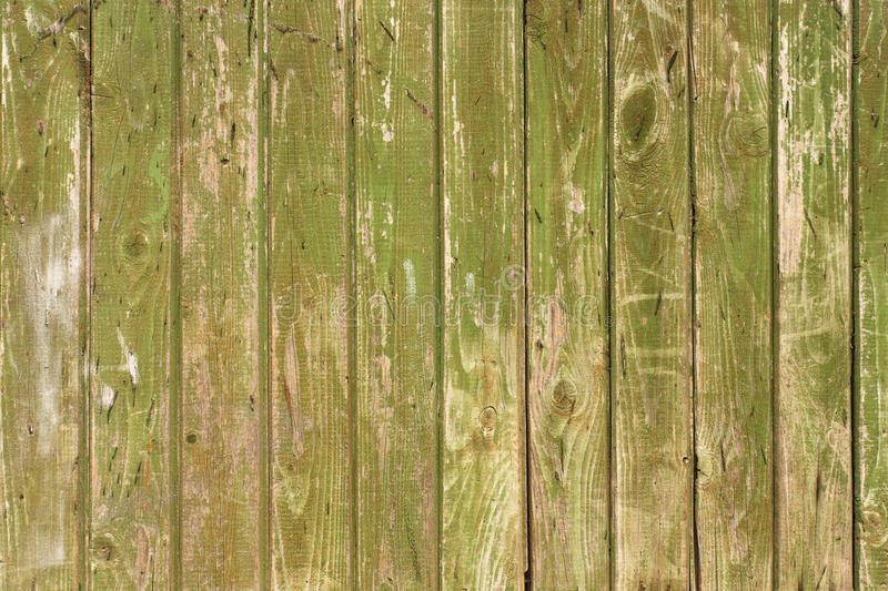 Green shabby wooden panel background closeup. Retro timbered backdrop closeup. Aged natural wood detail royalty free stock images