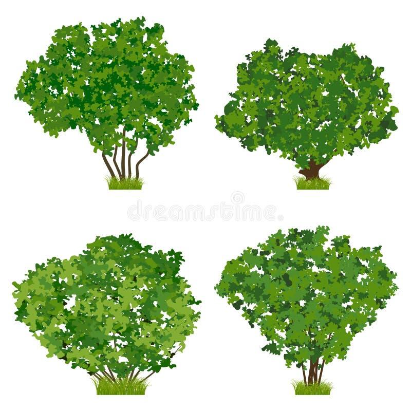Green shrubs vector set royalty free illustration