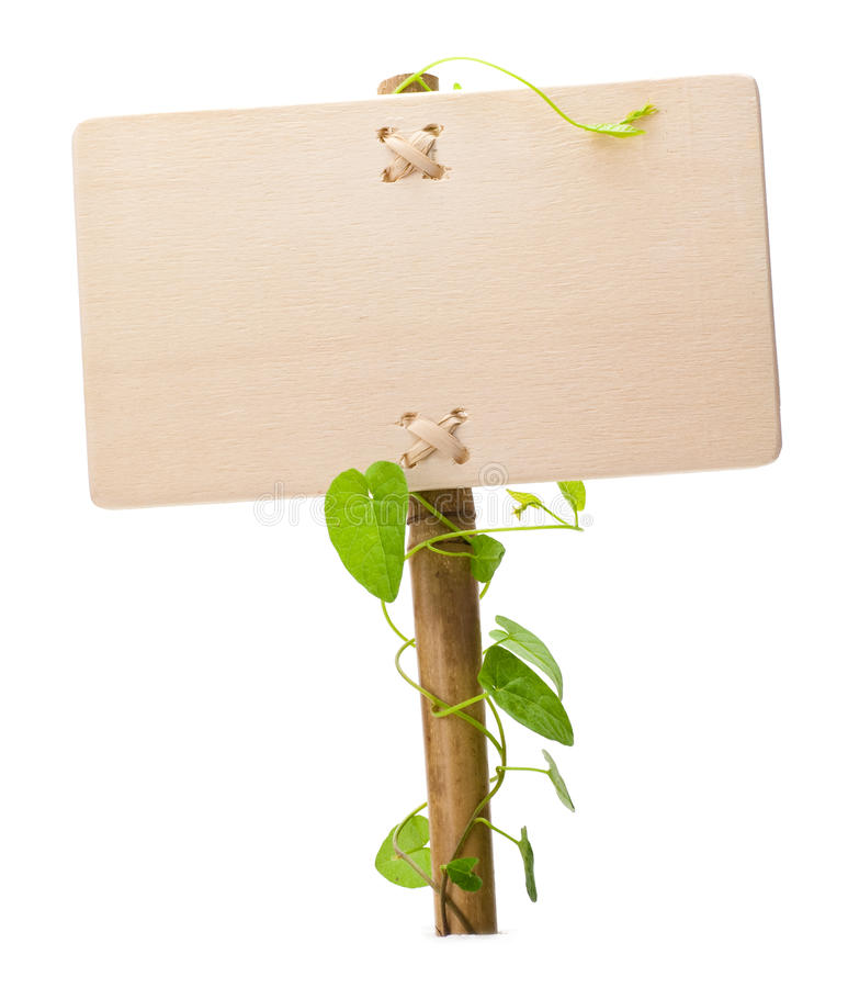 Green sign. Empty sign for message on a wooden panel and green plant - image is isolated on a white background