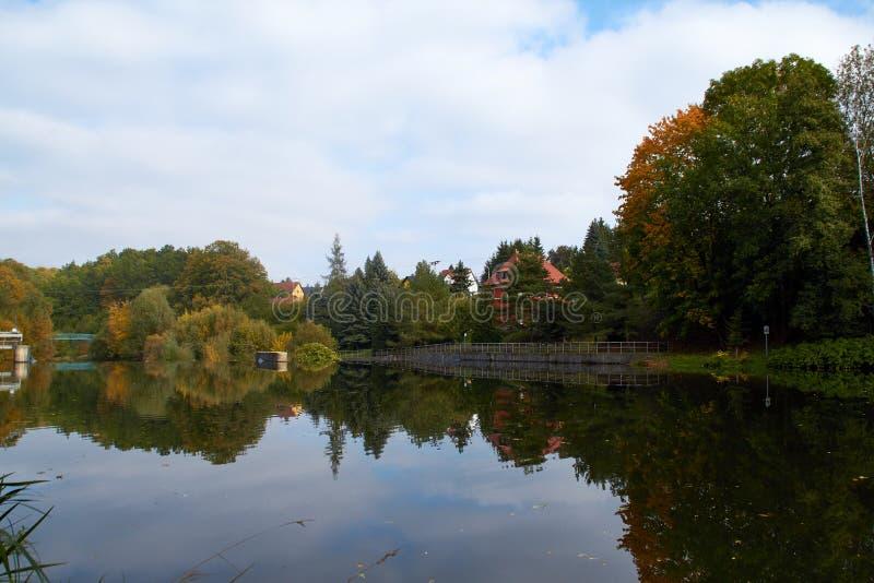 Green skogen och floden Forest Lake Floden fl?dar bland tr?d H?rlig sikt av naturen Landskapfoto av den gr?na skogen arkivfoto