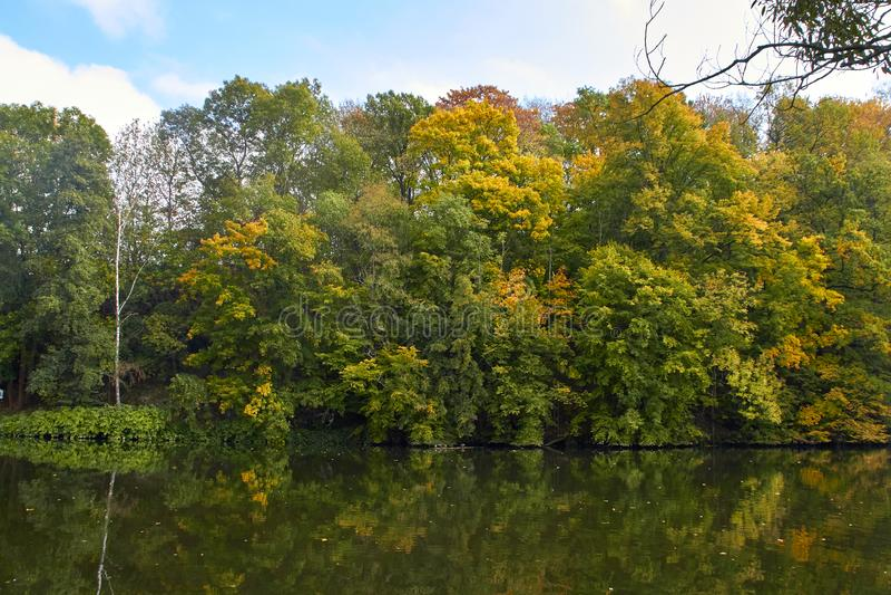 Green skogen och floden Forest Lake Floden fl?dar bland tr?d H?rlig sikt av naturen Landskapfoto av den gr?na skogen fotografering för bildbyråer