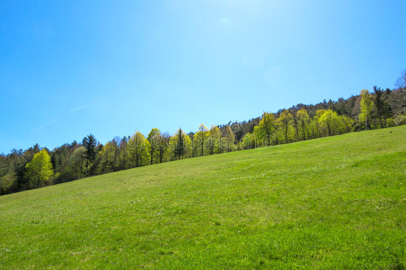 Green Slope royalty free stock images