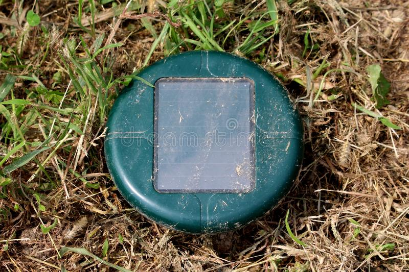 Green solar powered mole repeller used in local urban garden to repel moles and snakes surrounded with dry grass stock images