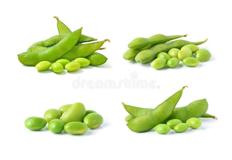 Green soybeans stock photos