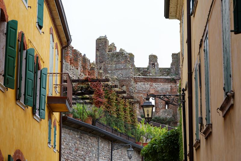 Urban rooftop garden in historic city. A green space in between apartment blocks and an old castle ruin - the rooftop garden in an alley of a historic city
