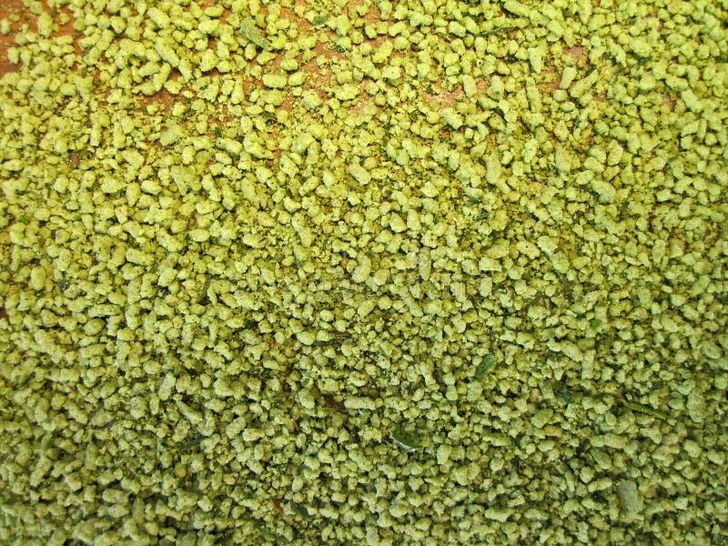 Green spices stock photos